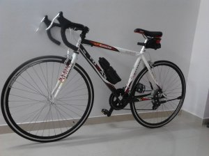 My New Cycle